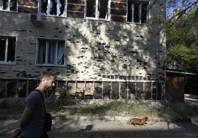 A local citizen walks with his dog near a regional hospital after shelling in Donetsk, eastern Ukraine, Sunday, August 24, 2014. Ukraine has retaken control of much of its eastern territory bordering Russia in the last few weeks, but fierce fighting for the rebel-held cities of Donetsk and Luhansk persists. (Photo by Sergei Grits/AP Photo)
