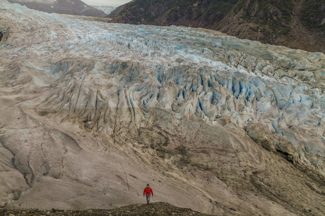 Daniel Fox walking on the Mendenhall Glacier, in September 2014, in Juneau, Alaska. Driving in an open-roofed jeep is no longer the fashionable way to see wildlife – as this adventurer shows. (Photo by Daniel Fox/Barcroft Media)