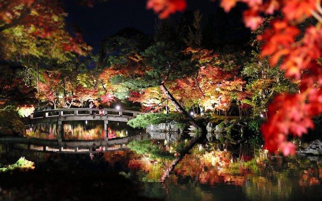 Autumn leaves are illuminated as the test lighting takes place at Eikando Zenrinji Temple on November 2, 2017 in Kyoto, Japan. The night illumination begins from November 7. (Photo by The Asahi Shimbun via Getty Images)