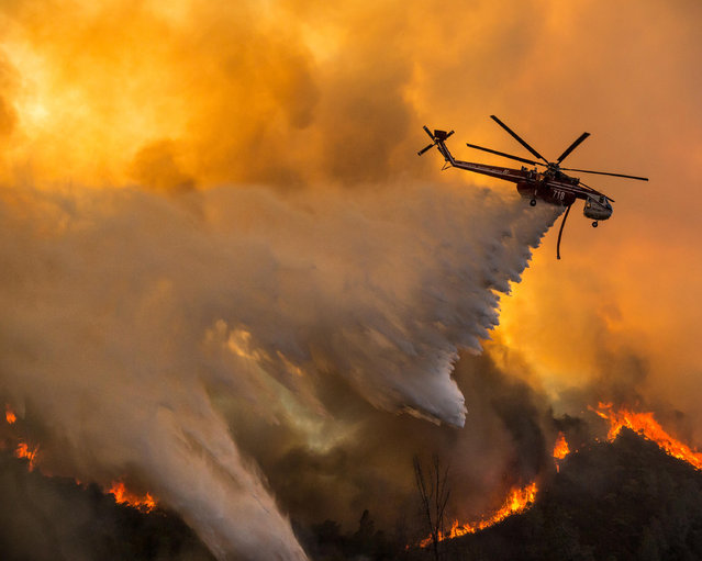 A firefighting helicopter drops water on the Marshes Fire, near the Moccasin Power Plant, along Highway 49 in the Sierra Nevada foothills, Moccasin, California, USA on September 26, 2016. (Photo by Tracy Barbutes/ZUMA Wire/Alamy Live News)