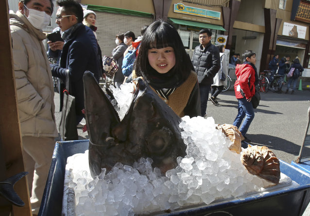 A woman looks at head of bluefin tuna on display in front of a store at Tsukiji fish market in Tokyo, Monday, February 19, 2018.  The large bluefin are particularly valuable in Japan, where they are considered a premium sushi and sashimi fish. A single fish sold for more than $1.75 million at an auction in Japan in 2013. (Photo by Koji Sasahara/AP Photo)