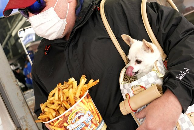 A dog named Izzy licks its chops as Craig Morland of Crofton, Maryland, buys a bucket of Thrashers famous fries on the first day of eased coronavirus disease (COVID-19) restrictions for the beach and boardwalk in Ocean City, Maryland, U.S., May 9, 2020. (Photo by Kevin Lamarque/Reuters)