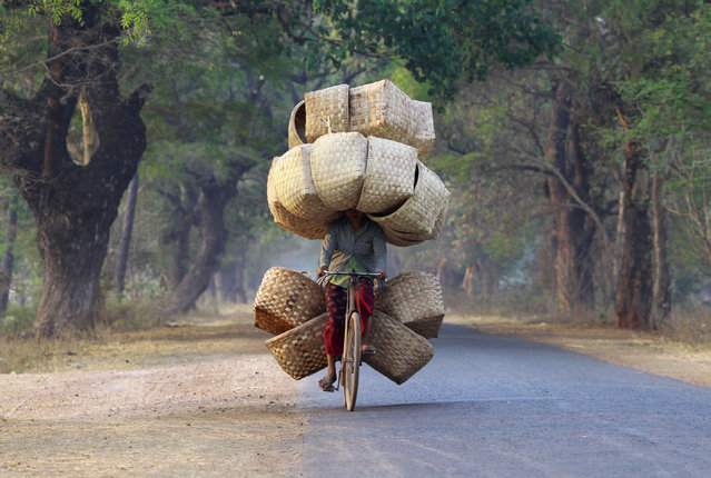 A woman cycles as she carries baskets to sell in a market near Lapdaung mountain in Sarlingyi township, March 13, 2013. (Photo by Soe Zeya Tun/Reuters)