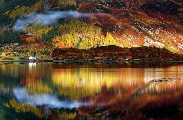 """Rorschach"". The image was taken this late autumn in the Highlands of Scotland. Photo location: Highlands, Scotland, Great Britain. (Photo and caption by Sorin Rechitan/National Geographic Photo Contest)"