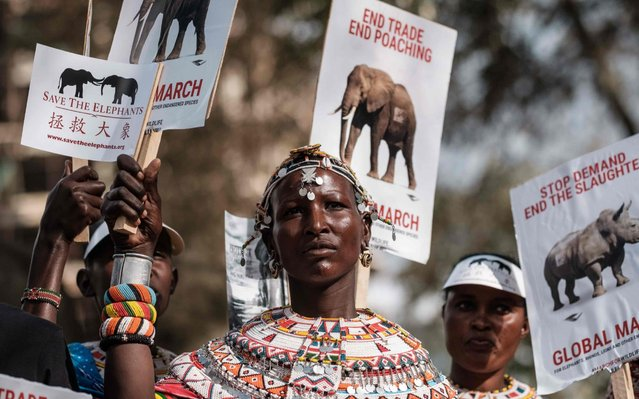 A Samburu woman holds a placard during the Global March for Elephants, Rhinos, Lions and other endangered species (GMFER) to raise awareness and demand governments take action to stop the poaching of elephants and rhinos and protect endangered wildlife in Nairobi, Kenya, on April 13, 2019. (Photo by Yasuyoshi Chiba/AFP Photo)