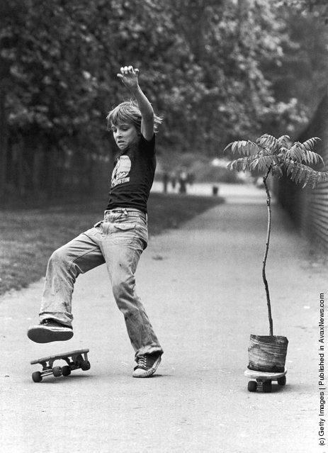 A boy loses his balance in a skateboard race against a pot-plant, 17th August 1977