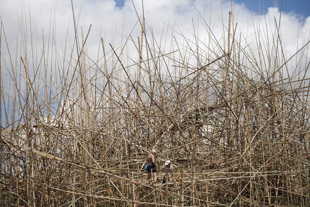 "Mountaineers work on an art installation  entitled the ""Big Bambu – 5,000 Arms to Hold You"" at the Israel Museum in Jerusalem, Israel, 12 May 2014. The artwork made of 10,000 bamboo stalks by US artists and brothers Mike and Doug Starn will open to the public on 10 June. (Photo by Abir Sultan/EPA)"