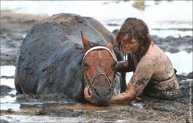 Owner Nicole Graham works with volunteers from CFA and SES tries to dig out her horse 'Astro' who became stuck up to his neck in mud at Avalon Beach