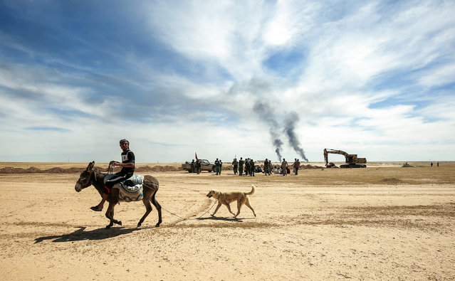 A diplaced Iraqi man rides a donkey, followed by his dog as pro-government Hashed al-Shaabi (Popular Mobilisation) paramilitary forces advance towards the UNESCO-listed ancient city of Hatra, southwest of the northern city of Mosul, during an offensive to retake the area from Islamic State (IS) group fighters, on April 26, 2017. Hatra is the latest important archaeological site to be recaptured from IS. Jihadists had embarked on a campaign of destruction against archaeological sites after they seized swathes of Iraq and Syria in a lightning 2014 offensive. The full extent of the harm to Hatra remains unclear. (Photo by Ahmad Al-Rubaye/AFP Photo)