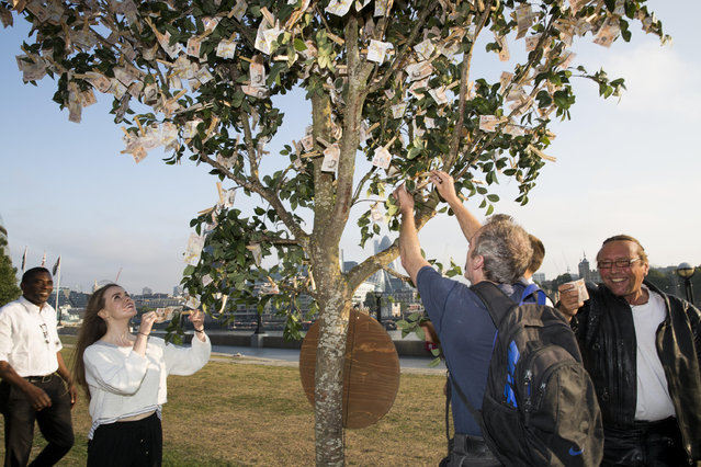 "Londoners walking through Potters Field Park were surprised to see a ""money tree"" blooming with £9820 in £10 notes, the average amount a working British family has in savings, on July 24, 2014 in London, England. The tree was planted by Sunlife to encourage the nation to start saving at least £10 a month for a brighter future. (Photo by Tristan Fewings/Getty Images for SunLife)"