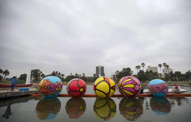 "Volunteer Aaron Diaz holds inflated spheres after they were lowered into MacArthur Park Lake during the installation of Portraits of Hope's exhibition ""Spheres at MacArthur Park"" in Los Angeles, California August 21, 2015. (Photo by Mario Anzuoni/Reuters)"