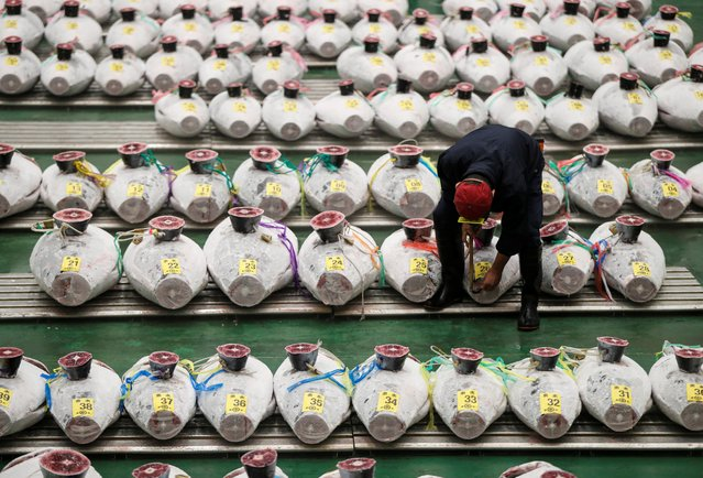 A wholesaler checks the quality of frozen tuna displayed during the tuna auctions, amid the coronavirus disease (COVID-19) outbreak, at Toyosu fish market in Tokyo, Japan on August 25, 2020. (Photo by Issei Kato/Reuters)