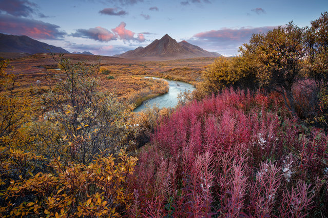 Winner, Breathing Spaces category. Tombstone territorial park, Yukon Territory, Canada. (Photo by Andrea Pozzi/The Guardian)
