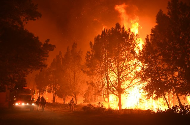 Firefighters douse flames as they approach the Casa Loma fire station in the Santa Cruz Mountains near Loma Prieta, California on September 27, 2016. (Photo by Josh Edelson/AFP Photo)