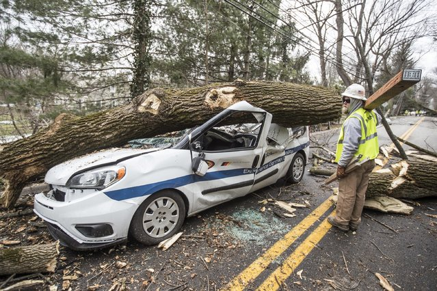 An electrical worker for INTREN, a electric company from Chicago that drove two days to get to Philadelphia to help PECO restore power, walks by a damaged vehicle on  in Bryn Mawr, Pa., on Sunday, March 4 2018, that was crushed by a falling tree on Friday. The driver was able to climb out the window and received several stitches for his injuries. (Photo by Michael Bryant/The Philadelphia Inquirer via AP Photo)