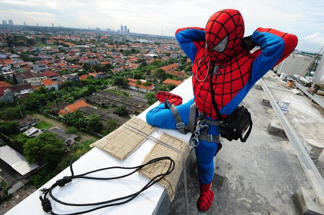 "Indonesian ""Spider-Man"" window cleaner, 37-year-old Teguh prepares his equipment before he cleans the glass windows of the 18-storey Alana Hotel on July 12, 2013 in Surabaya, Indonesia. Teguh is a specialist glass window cleaner working on high-rise buildings wearing a Spider-Man uniform and working at an altitude of over 500 meters above ground level. He earns between Rp. 5 million and 15 million depending on the height of the building and the level of difficulty. (Photo by Robertus Pudyanto/Getty Images)"