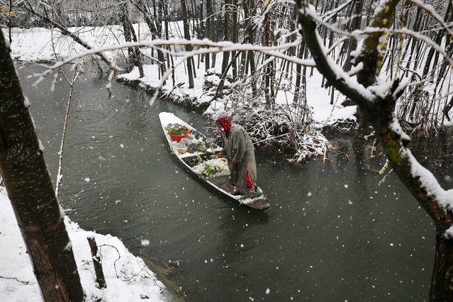 A Kashmiri boatman rows his boat laden with vegetables through a water channel during fresh snowfall Srinagar, the summer capital of Indian Kashmir, March 16, 2015. Fresh snowfall March 16, has disrupted normal life across Indian Kashmir, as air traffic remained suspended and the forced closure of Srinagar-Jammu national highway, the only road link connecting Kashmir region with rest of world, effectively cut the country off. (Photo by Farooq Khan/EPA)