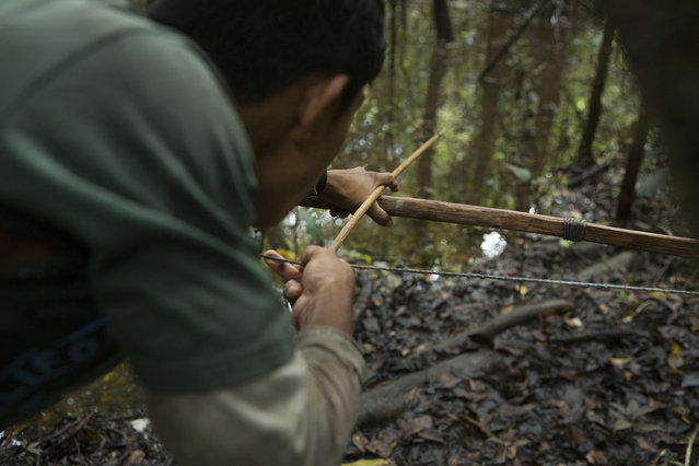 While line and net fishing are increasingly popular, a few youth like Kremoro still fish effectively with a bow and arrows. This method of fishing usually takes place along the river's edge in the jungle, where the fisher can also spot other game, such as turtles and monkeys. (Taylor Weidman)