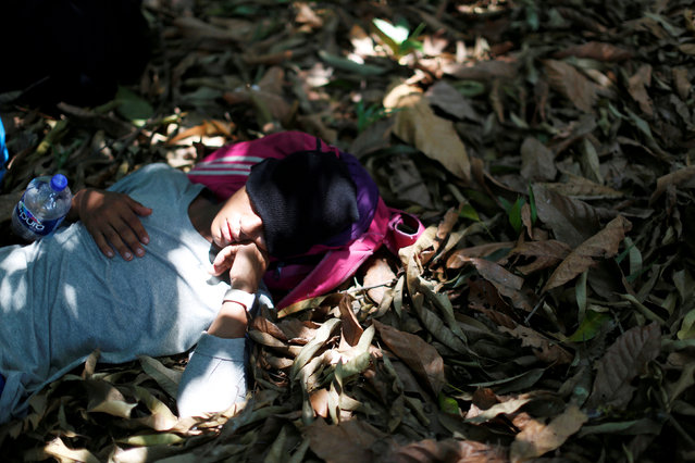 """A man belonging to a caravan of migrants from Honduras en route to the United States, sleeps in a forest by a highway in Tuxtla Chico, Mexico, April 12, 2019. A group of 350 Central American migrants forced their way into Mexico Friday, authorities said, as a new caravan of around 2,500 people arrived – news sure to draw the attention of US President Donald Trump. Mexico's National Migration Institute said some members of the caravan had a """"hostile attitude"""" and had attacked local police in the southern town of Metapa de Dominguez after crossing the border from Guatemala. (Photo by Jose Cabezas/Reuters)"""