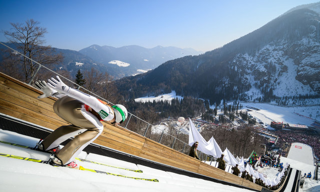 Robert Kranjec of Slovenia competes during the Flying Hill Individual event of the FIS Ski Jumping World Cup in Planica, Slovenia on March 20, 2016. (Photo by Jure Makovec/AFP Photo)