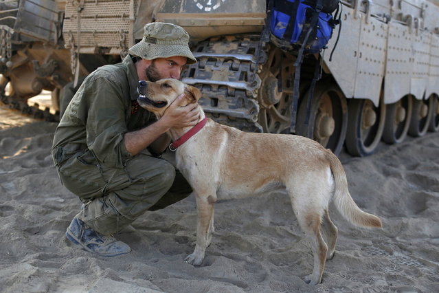 An Israeli soldier kisses a dog at a staging area near the border with Gaza August 3, 2014. (Photo by Siegfried Modola/Reuters)