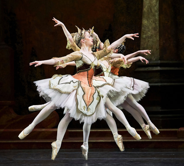Dancers from the Birmingham Royal Ballet perform Sleeping Beauty at at the Mayflower theatre in Southampton on 30 January 2018. (Photo by Thomas Bowles/Rex Features/Shutterstock)