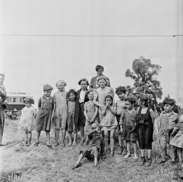 A group of Romany children at an encampment at Corke's Meadow in Kent, July 1951. (Photo by Bert Hardy/Picture Post/Hulton Archive/Getty Images)