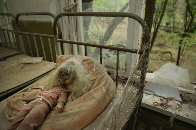 A doll lies among children's beds standing in the abandoned kindergarten of Kopachi village located inside the Chernobyl Exclusion Zone on September 29, 2015 near Chornobyl, Ukraine. (Photo by Sean Gallup/Getty Images)