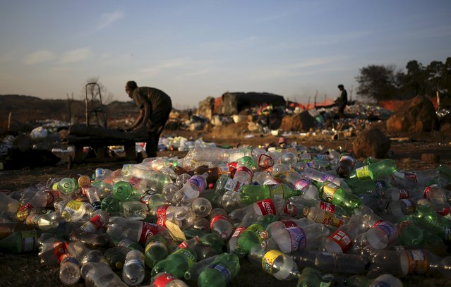 An unemployed man sorts out recyclable waste material in front of plastic soft drink bottles which he sells for a living, in Daveland near Soweto, South Africa August 4, 2015. (Photo by Siphiwe Sibeko/Reuters)