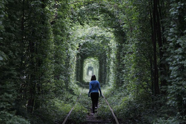 "A girl walks on a disused railway track, through what is known locally as the ""Tunnel of Love"", in small town Kleven some 350 km (217 miles) off western Kiev May 13, 2012"