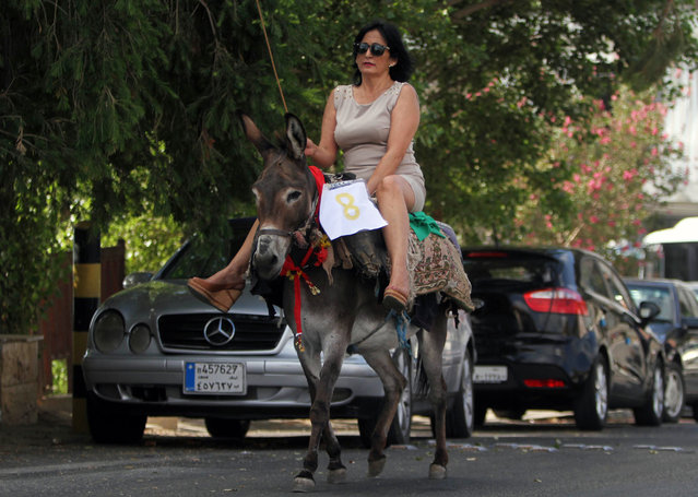 A Lebanese woman rides a donkey during an annual race competition in the southern Lebanese city of Jezzine, Lebanon, Sunday, Aug. 9, 2015. (Photo by Mohammed Zaatari/AP Photo)