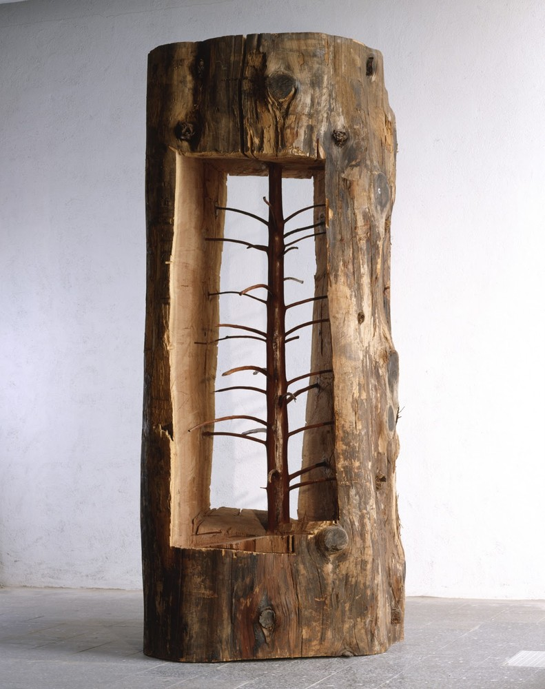 The Hidden Life Within by Giuseppe Penone