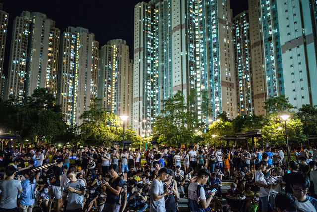 "People play the Pokemon Go game at a park at Tin Shui Wai on July 26, 2016 in Hong Kong. ""Pokemon Go"", which has been a smash-hit across the globe was launched in Hong Kong on 25th July although shares in Nintendo Co tumbled on Monday after the company said the mobile game would not be a strong earnings driver. (Photo by Lam Yik Fei/Getty Images)"
