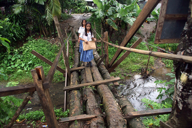 This photo taken 12 November, 2007 shows students crossing an improvised bridge made of coconut trees at the village of San Jose in the town of Borongan, eastern Philippines. The bridge connects people to the village high school campus. During the rainy season the bridge becomes slippery and exposed to flash floods. (Photo by Ted Aljibe/AFP Photo)