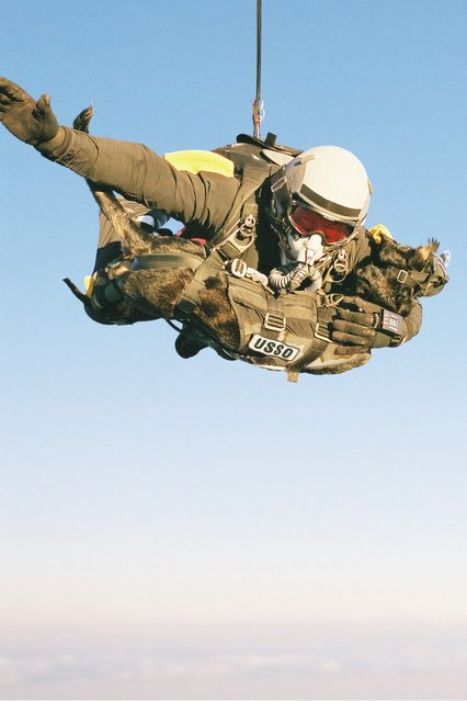 "A U.S. Navy SEAL, Mike Forsythe, and his dog, Cara recently broke the world record for ""highest man/dog parachute deployment"" by jumping from 30,100 feet. (Photo by Courtesy K9 Storm Inc.)"