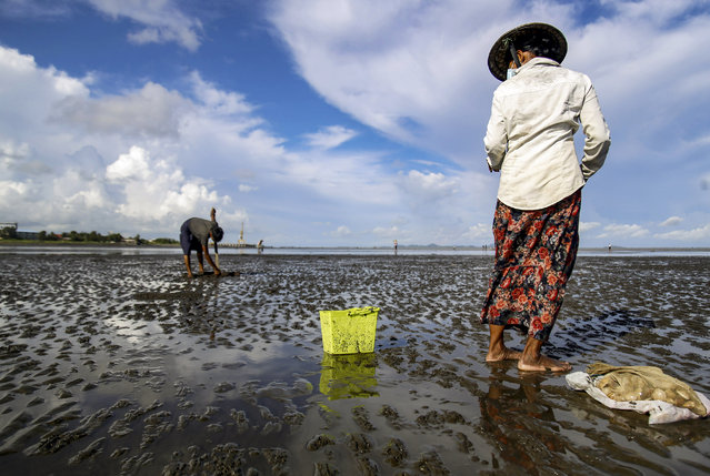 People search for shells on a beach in Sittwe, Rakhine State, Myanmar, 17 September 2020. International Coastal Cleanup Day is observed annually on the third Saturday of September and will occur on 19 September this year. The day was established to encourage global efforts to clean up garbage on beaches and coastal areas and raise awareness on protecting the world's oceans and waterways. According to a report released by the US-based nonprofit environmental advocacy group Ocean Conservancy on 08 September 2020, plastic food packaging topped the list of most common items found in beach trash. Close to five million food wrappers were collected in a single day during the International Coastal Cleanup Day in 2019. An approximate 11 million metric tons of plastic enters the ocean every year according to a 2016 analysis, affecting more than 800 marine species and causing contamination to human food chains and drinking water. (Photo by Nyunt Win/EPA/EFE/Rex Features/Shutterstock)
