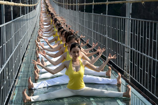 Women practice yoga during a performance on a glass bridge at the Shiniuzhai National Geo-park in Pingjiang county, Hunan province, China, November 5, 2015. (Photo by Reuters/China Daily)