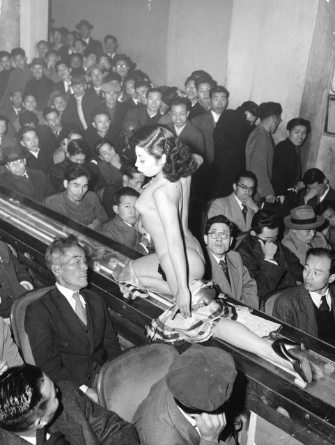1957:  A stripper at a Tokyo striptease show is taken past the audience on a moving plastic conveyor belt, which is lit from underneath by neon lights.  (Photo by Keystone/Getty Images)