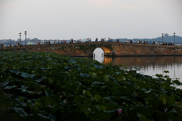 People walk on a bridge at the West Lake in Hangzhou, Zhejiang province, China August 31, 2016. Picture taken August 31, 2016. (Photo by Aly Song/Reuters)