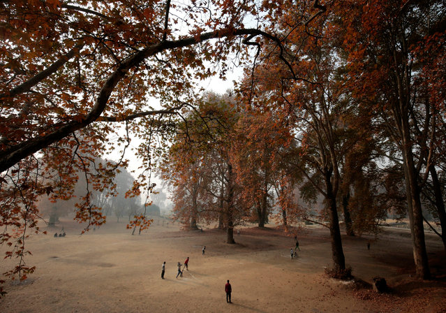 Kashmiri boys play cricket under the Chinar trees inside Nishat Garden in Srinagar, the summer capital of Indian Kashmir, 18 November 2016. Autumn in Kashmir is marked by golden brown leaves of Chinar trees which fall on the ground and make a cracking sound when walked over. (Photo by Farooq Khan/EPA)