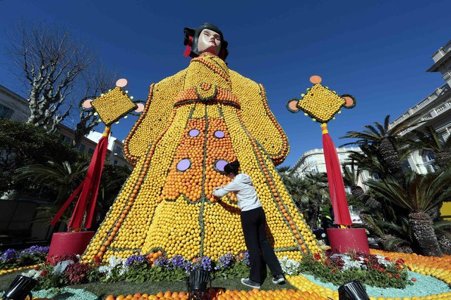 A worker puts the final touches to a replica of a Chinese empress made with lemons and oranges during the 82th Lemon festival in Menton February 12, 2015. (Photo by Eric Gaillard/Reuters)