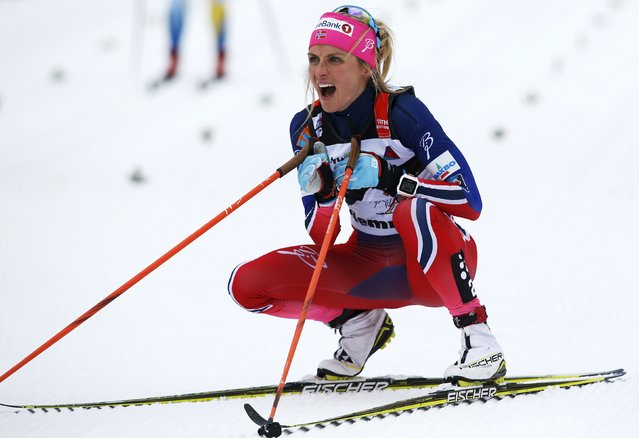 Theres Johaug of Norway reacts after crossing the finish line during the women's FIS Tour De Ski World Cup cross-country skiing 10km mass start classic race on the lago di Tesero track in Val di Fiemme January 9, 2016. (Photo by Alessandro Garofalo/Reuters)