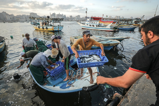 Palestinian fishermen return from fishing at Port of Gaza following Israel's extension of fishing perimeter from 3 miles to 9 miles in Gaza City, Gaza on August 15, 2018. (Photo by Ali Jadallah/Anadolu Agency/Getty Images)