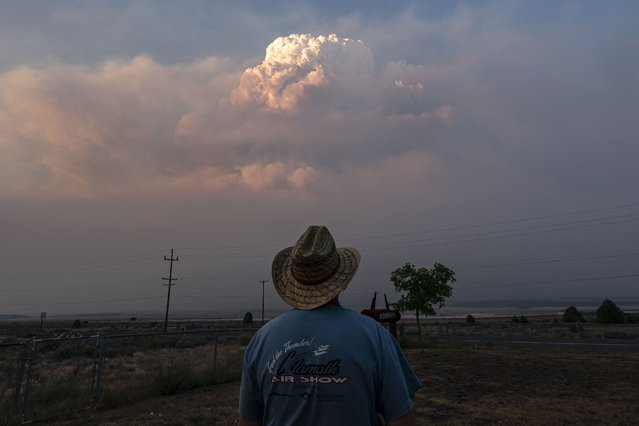 Shane Durant watches the Bootleg Fire smoke plume while walking his dog, Monday, July 12, 2021, near Bly, Ore. (Photo by Nathan Howard/AP Photo)