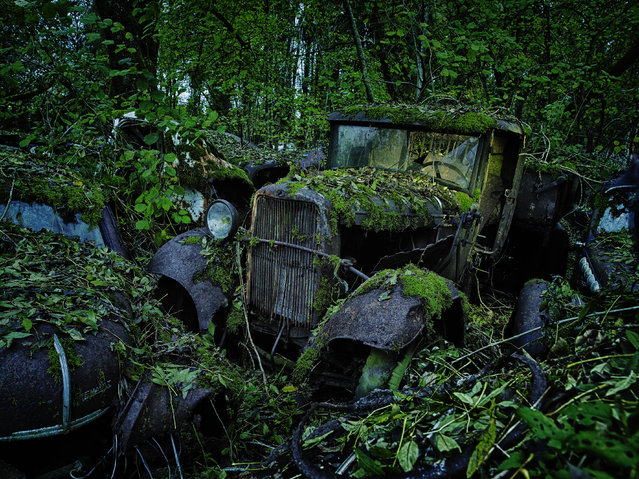 Moss grows on an old-fashioned motor, on October 31, 2013, in Germany. (Photo by Dieter Klein/Barcroft Media)