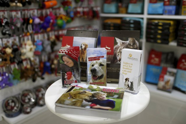 Dog equipment is displayed at a shop in My Second Home, a newly opened luxury pet resort and spa, in Dubai, April 24, 2015. (Photo by Ahmed Jadallah/Reuters)