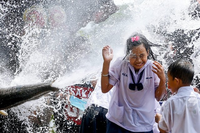 A schoolgirl is soaked with water thrown by an elephant in a preview of the upcoming Songkran Festival celebration, the Thai traditional New Year, also known as the water festival in the ancient world heritage city of Ayutthaya, Thailand, 11 April 2016. The annual elephant Songkran is held to promote the tourism industry prior the three-day Songkran Festival which starts on 13-15 April annually and is celebrated with splashing water and putting powder on each others faces as a symbolic sign of cleansing and washing away the sins from the old year. (Photo by Diego Azubel/EPA)