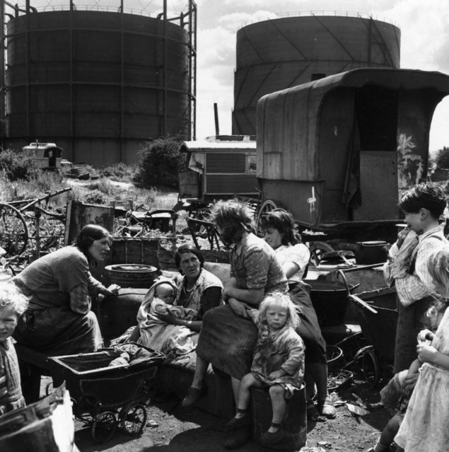 Romanies camp beneath the shadow of a gasometer in Corke's Meadow, Kent on July 28, 1951. (Photo by Bert Hardy/Picture Post/Getty Images)