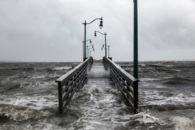 Strong gusts of wind and bands of heavy rain cover a walkway at the Jensen Beach Causeway Park in Jensen Beach, Florida on September 3, 2019. Weakening slightly but still packing a powerful punch, Hurricane Dorian churned towards the southeastern coast of the United States after delivering a devastating blow to the Bahamas. (Photo by Adam DelGiudice/AFP Photo)