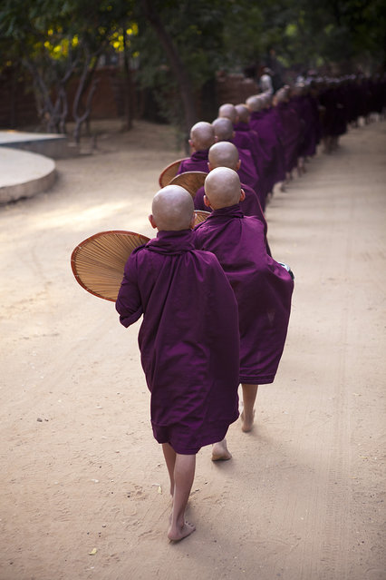 """""""Monks in line"""". A long line of monks return to their monastery in Bagan, Myanmar, after their daily walk around the town asking for food donations from local residents. Photo location: Bagan, Myanmar. (Photo and caption by Marcelo Salvador/National Geographic Photo Contest)"""